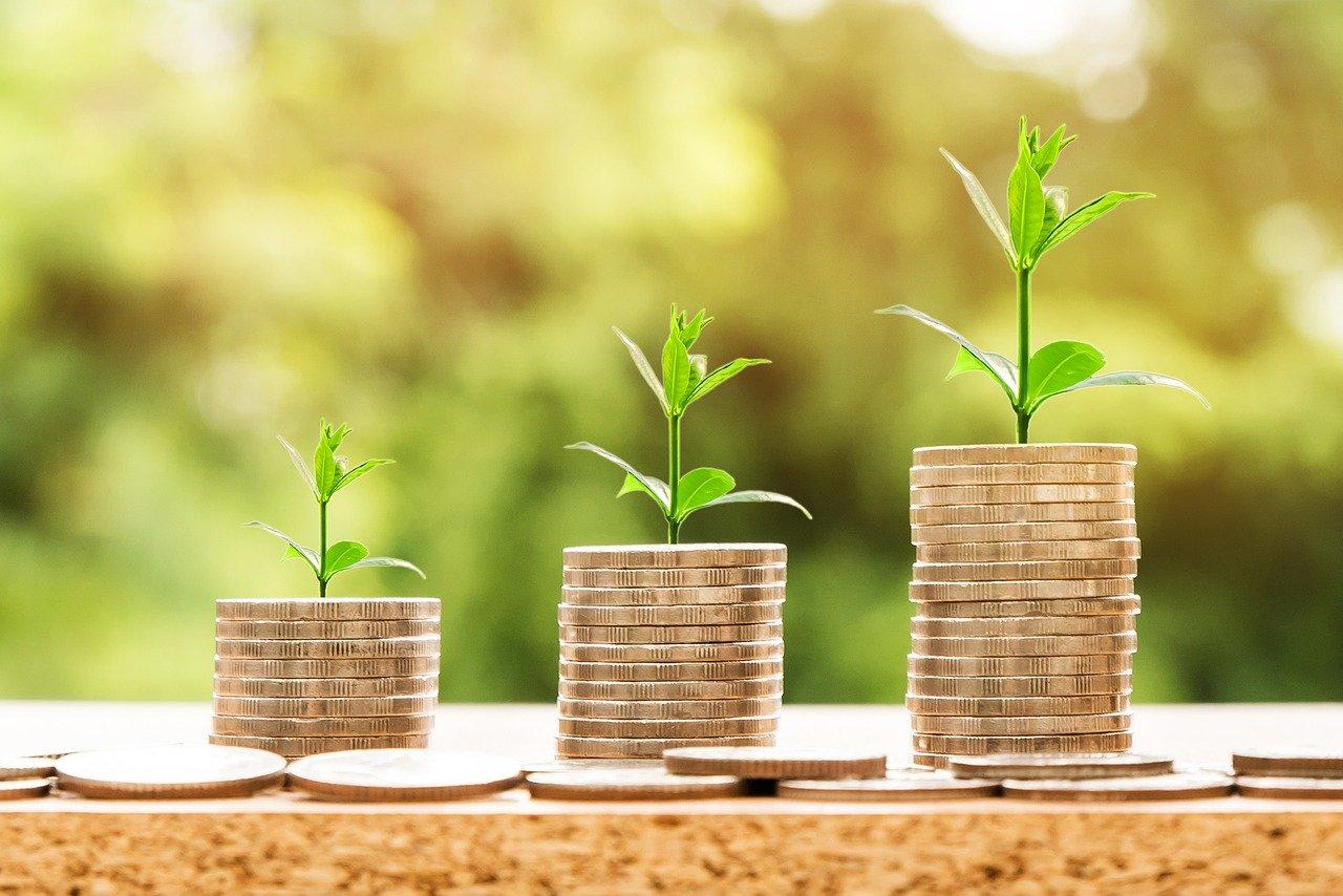 3 Ways To Be More Environmentally Friendly While Saving Money